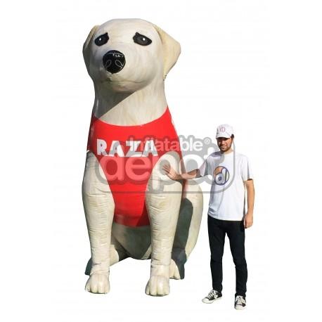 Perro RAZA